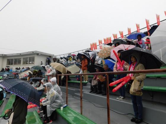 ⑭雨の中熱烈応援